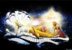 romapada swami on srimad bhagavatam